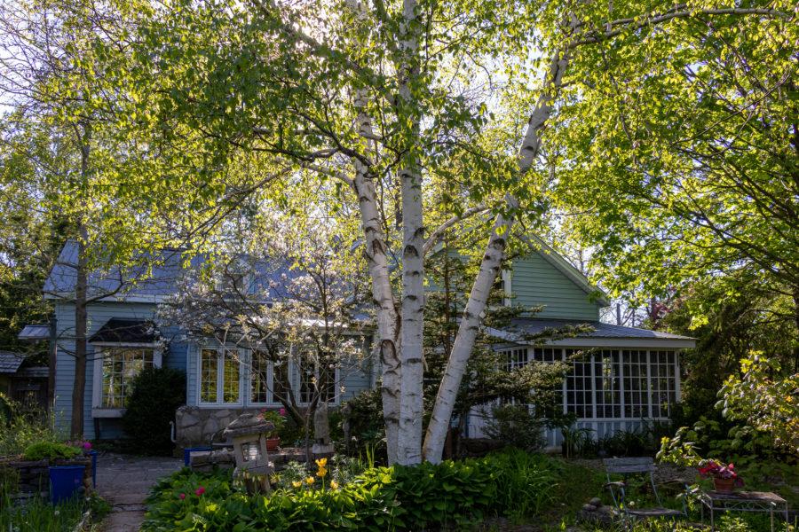 Garten und Wohnhaus von Bill und Dawn sind paradiesisch schön.