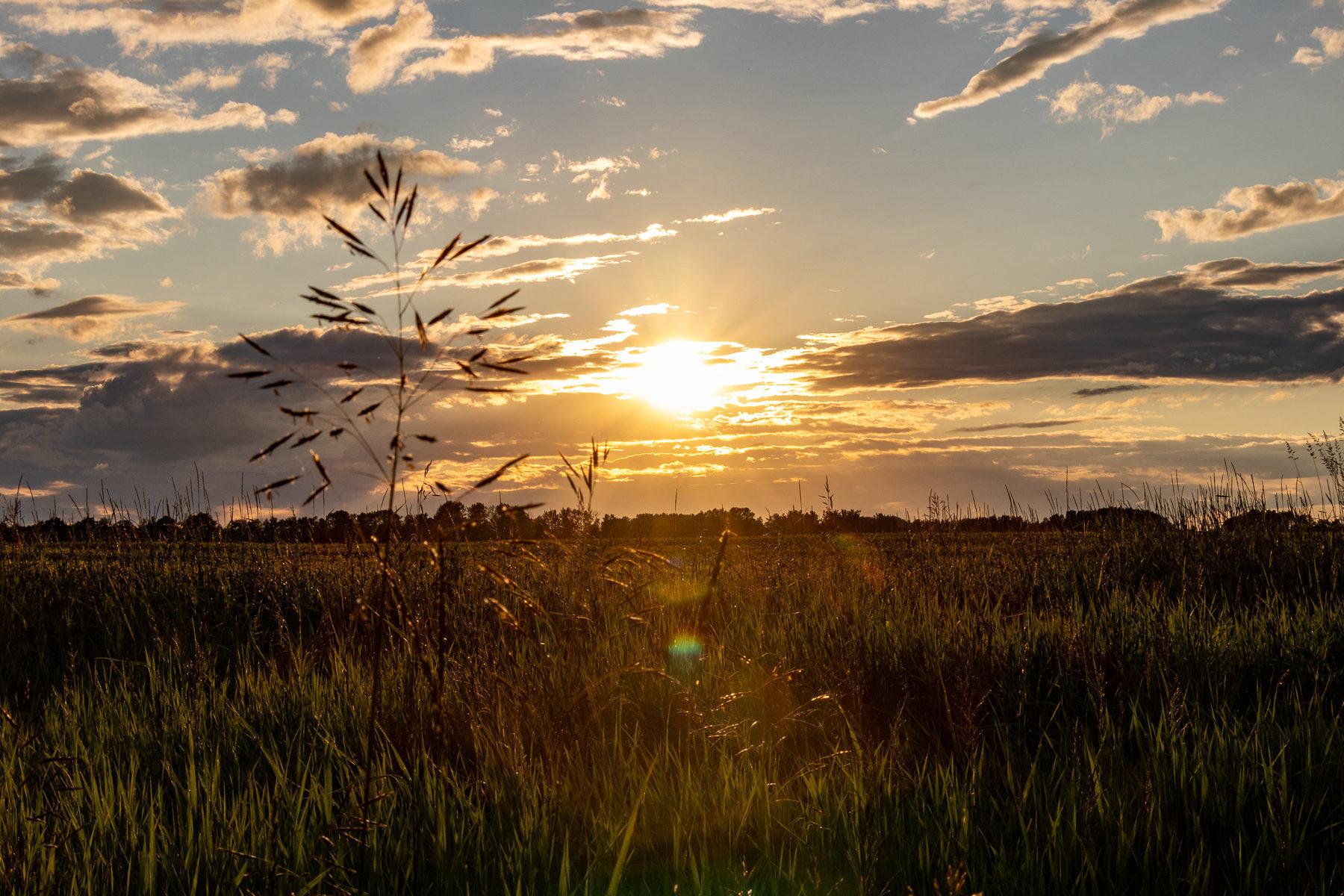 Sonnenuntergänge dieser Art gab es in Albertra oft.