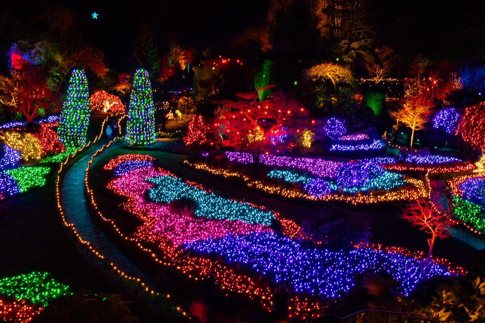 At Christmas time, Butchard Gardens are an ocean of ​​lights.