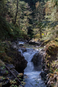 In Little Qualicum Falls, in addition to large ones, there are also many smaller waterfalls like this one.