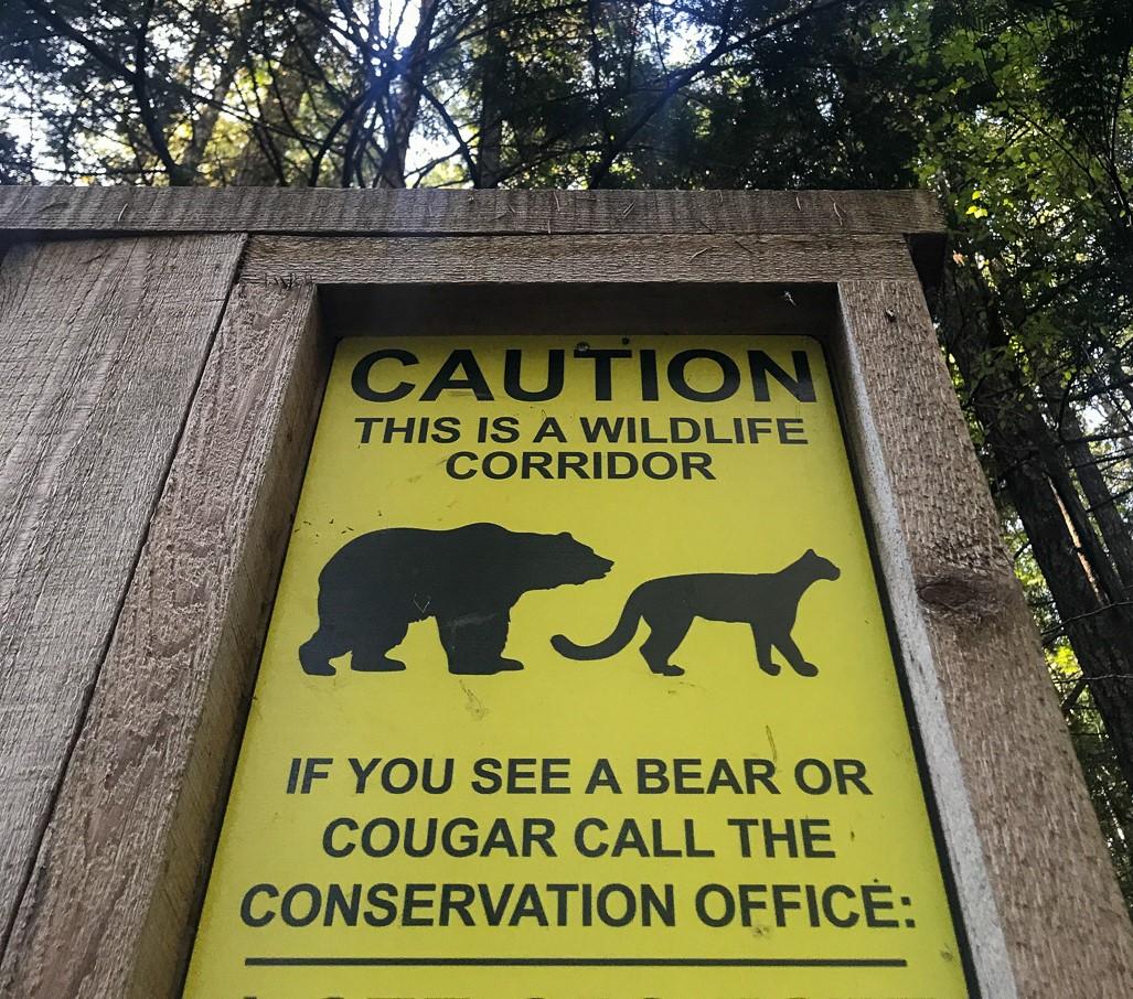 Vielerorts auf der Insel warnen Hinweisschilder vor Bären. Ich habe leider (oder zum Glück?) keinen gesehen.