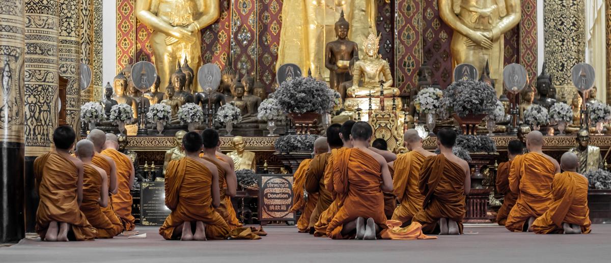 Novizen knien in Wat Chedi Luang während des abendlichen Chanting.